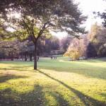 Parc de Procé